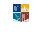 NUI Logo